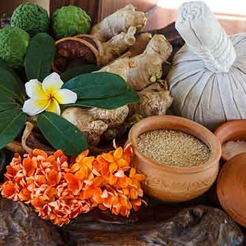 Thai Herbal Compress